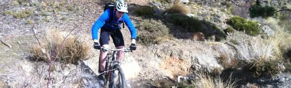 Afan Forest Park – A Mountain Bike Adventure